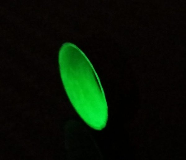 Twill Green Glowing Interior