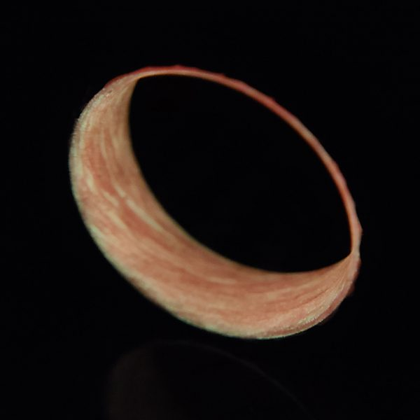 Carbon Fiber Twill Ring with Red Glowing Interior